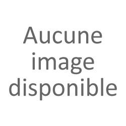 Magasin Le Cabinet de Curieux